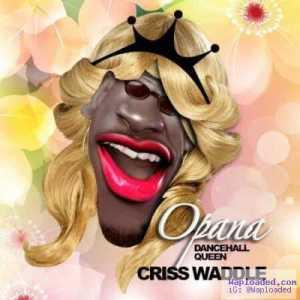Criss Waddle - Opana (Shatta Wale Diss)